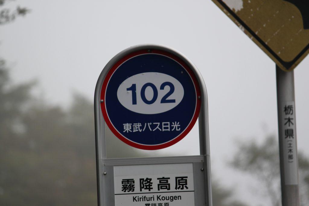 日光 霧降高原 「海抜 1000年 メートル 以上」 ハーレーツーリング