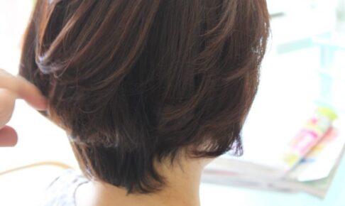 縮毛矯正の 季節が近づく 「髪が空気中の水分を吸い込んで 収縮し始める」