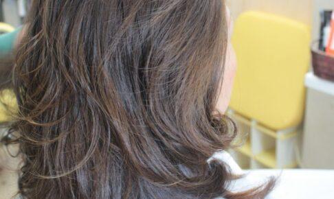 髪の悩みを時折 投げかけられます 「太毛 硬毛で お悩みの方 今は」
